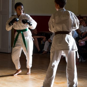6 Reasons Why All Children Should Learn Karate
